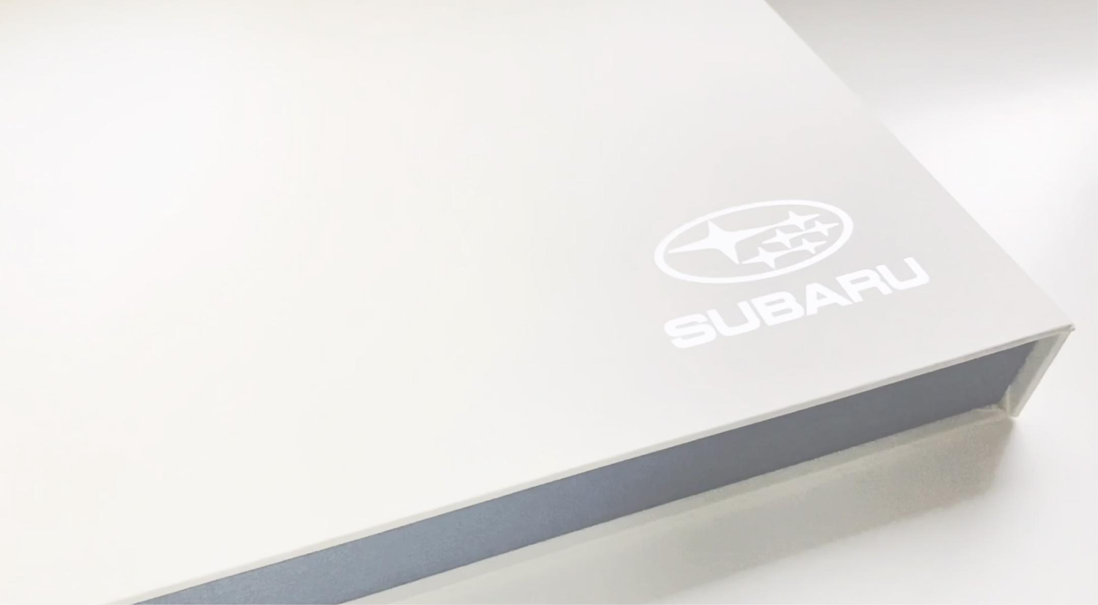 LudbrookAgency_Subaru-Brand-Environment